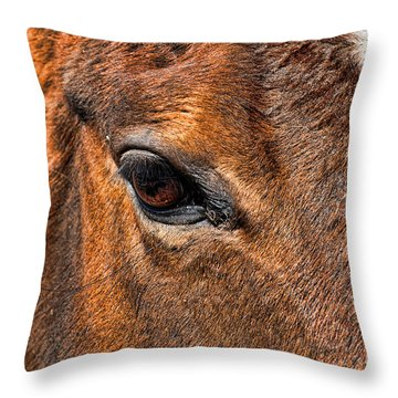 Close Up Of A Horse Eye Throw Pillow by Paul Ward