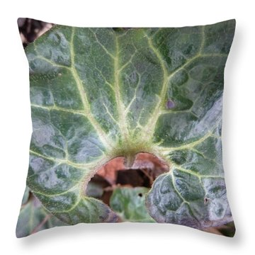 Close-up Of A Leaf Throw Pillow