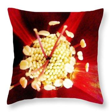 Close Up Of A Lenten Rose Throw Pillow by Ann Michelle Swadener
