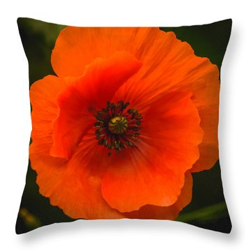 Close Up Of A Poppy Flower Throw Pillow