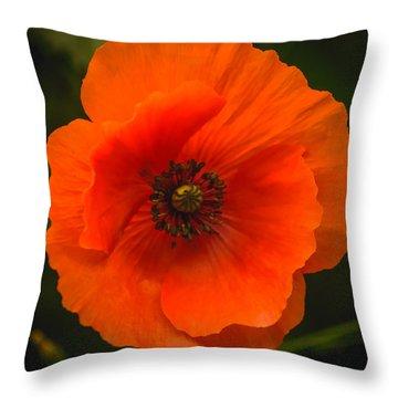 Close Up Of A Poppy Flower Throw Pillow by Yvon van der Wijk