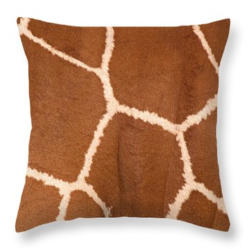 Close-up Of A Reticulated Giraffe Throw Pillow