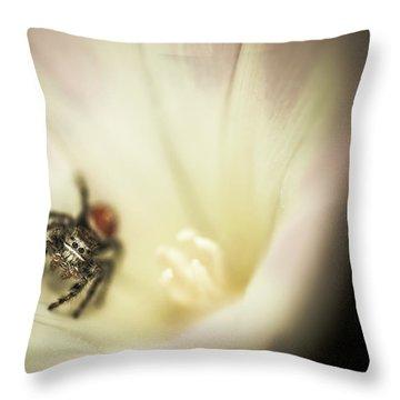 Close-up Of A Spider Inside A Flower Throw Pillow