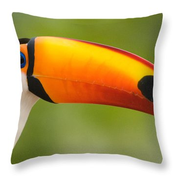 Close-up Of A Toco Toucan Ramphastos Throw Pillow
