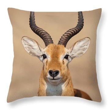 Close-up Of A Ugandan Kob Kobus Kob Throw Pillow