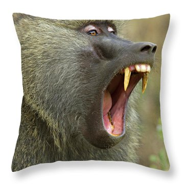 Close-up Of An Olive Baboon Papio Throw Pillow