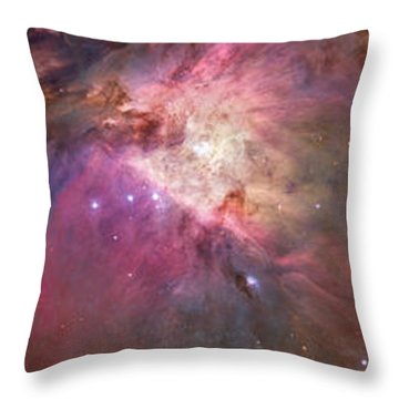 Close-up Of Galaxy With Iris And Tulips Throw Pillow