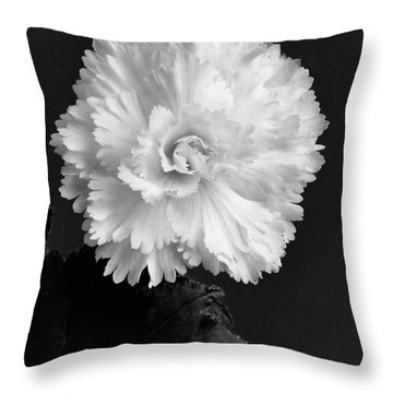 Close Up View Throw Pillow
