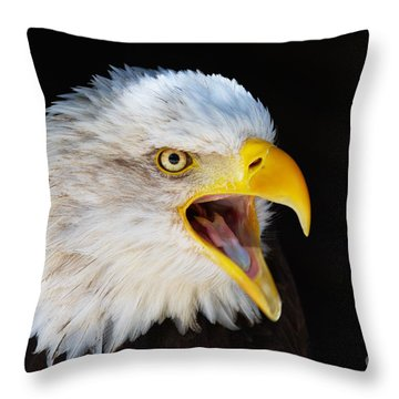 Closeup Portrait Of A Screaming American Bald Eagle Throw Pillow by Nick  Biemans