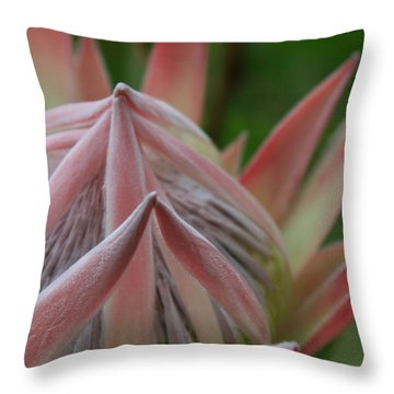 Cloths Of Heaven  Throw Pillow