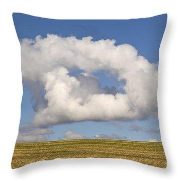 Cloud Throw Pillow by David Davies