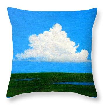 Cloud Over Wetlands Throw Pillow