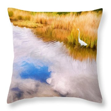 Cloud Reflection In Water Digital Art Throw Pillow by Vizual Studio