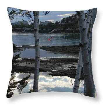 Clouds On Water Throw Pillow by Jean Goodwin Brooks