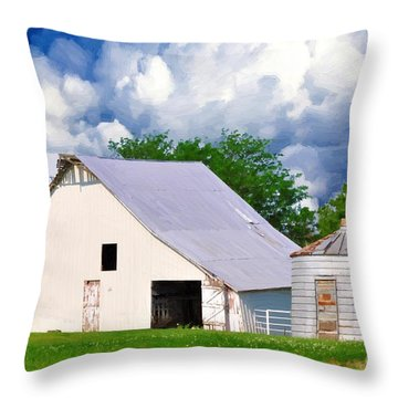 Cloudy Day In The Country Throw Pillow by Liane Wright