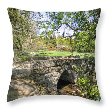 Throw Pillow featuring the photograph Clover Valley Park Bridge by Jim Thompson