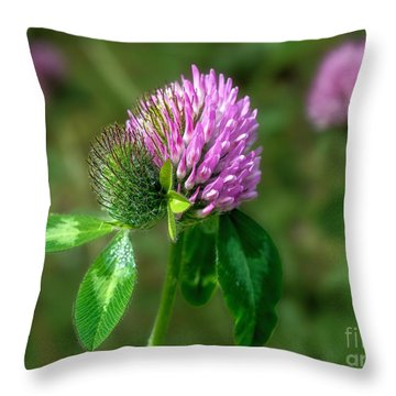 Clover - Wildflower Throw Pillow by Henry Kowalski