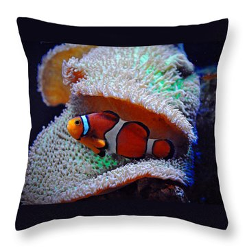 Throw Pillow featuring the photograph Clown Fish by Savannah Gibbs