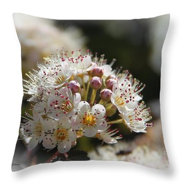 Cluster Of Small Flowers Throw Pillow