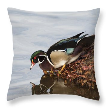 C'mon In The Waters Fine Throw Pillow