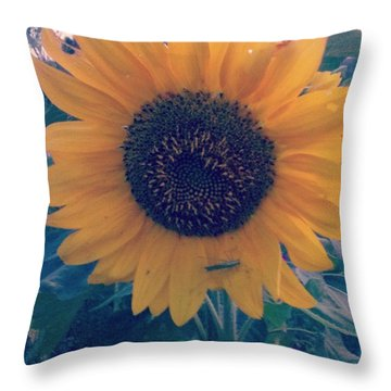 Co-existing Throw Pillow