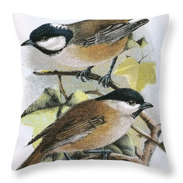 Coal Tit And Marsh Tit Throw Pillow