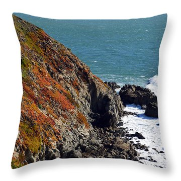 Coast Throw Pillow by Brent Dolliver