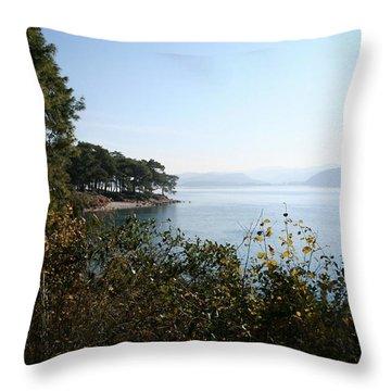 Throw Pillow featuring the photograph Coast by Tracey Harrington-Simpson
