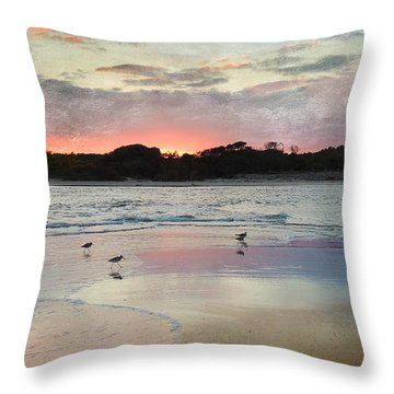 Coastal Beauty Throw Pillow by Betty LaRue