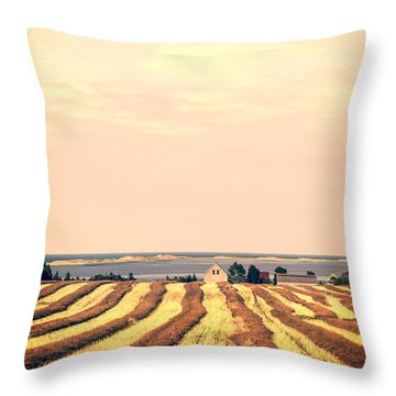 Coastal Farm Pei Throw Pillow by Edward Fielding