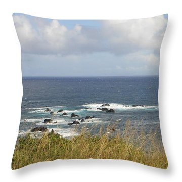 Throw Pillow featuring the photograph Coastal Grass by Fred Wilson