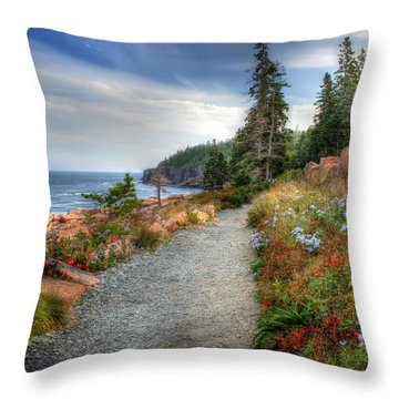 Coastal Meandering Throw Pillow