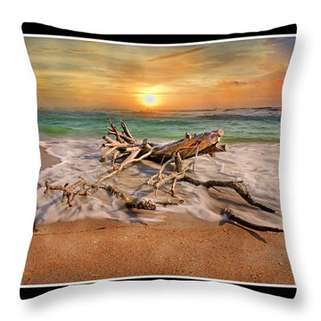 Coastal Morning  Throw Pillow by Betsy Knapp