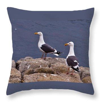 Coastal Seagulls Throw Pillow by Melinda Ledsome