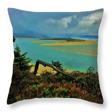 Coastal Storm Throw Pillow by Benjamin Yeager