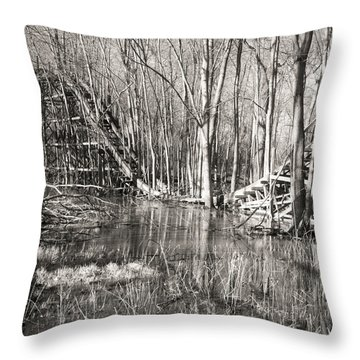 Coaster Reflections Throw Pillow by William Beuther