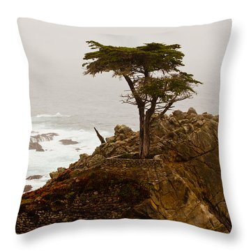 Coastline Cypress Throw Pillow by Melinda Ledsome