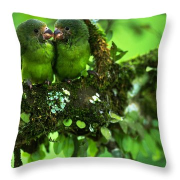 Cobalt-winged Parakeets Throw Pillow by Art Wolfe