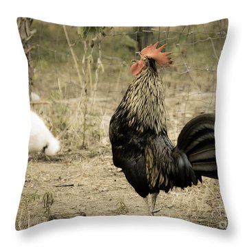 Cockadoodledoo Throw Pillow