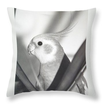 Throw Pillow featuring the photograph Cockatiel In Palm by Belinda Lee