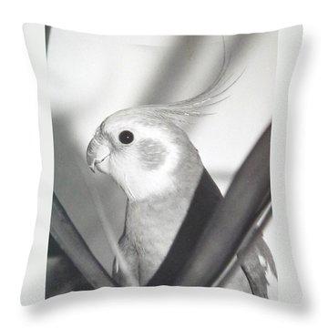 Cockatiel In Palm Throw Pillow by Belinda Lee