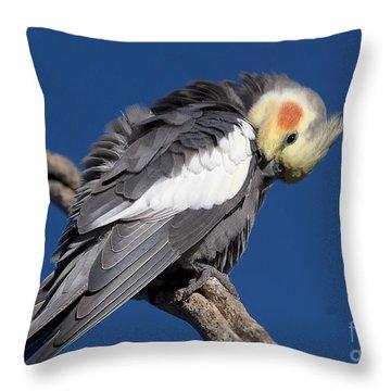 Cockatiel - Canberra - Australia Throw Pillow