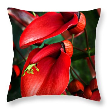 Throw Pillow featuring the photograph Cockspur Coral Tree by William Tanneberger