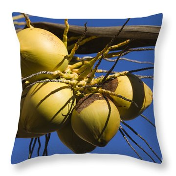 Coconut 1 Throw Pillow by Teresa Zieba