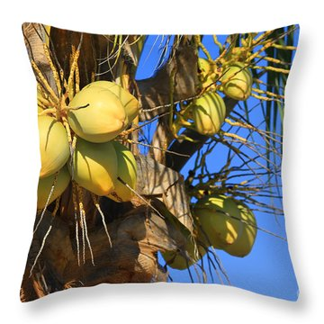 Throw Pillow featuring the photograph Coconut 2 by Teresa Zieba