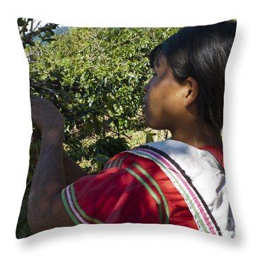 Coffee Harvest Time 3 Throw Pillow by Heiko Koehrer-Wagner