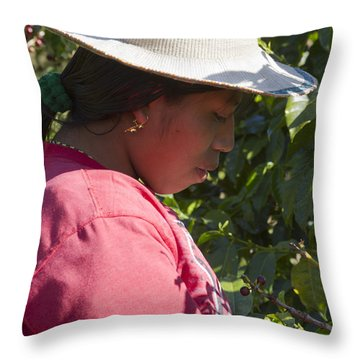 Coffee Harvest Time Throw Pillow by Heiko Koehrer-Wagner