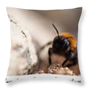 Colage Of Macro Throw Pillow