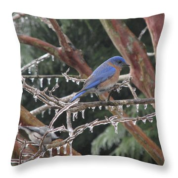 Cold And Blue Throw Pillow