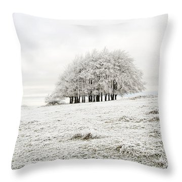 Cold Throw Pillow by Anne Gilbert
